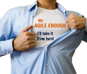 Reaching Agile Self-Sufficiency | The Internal Agile Coach Role ...