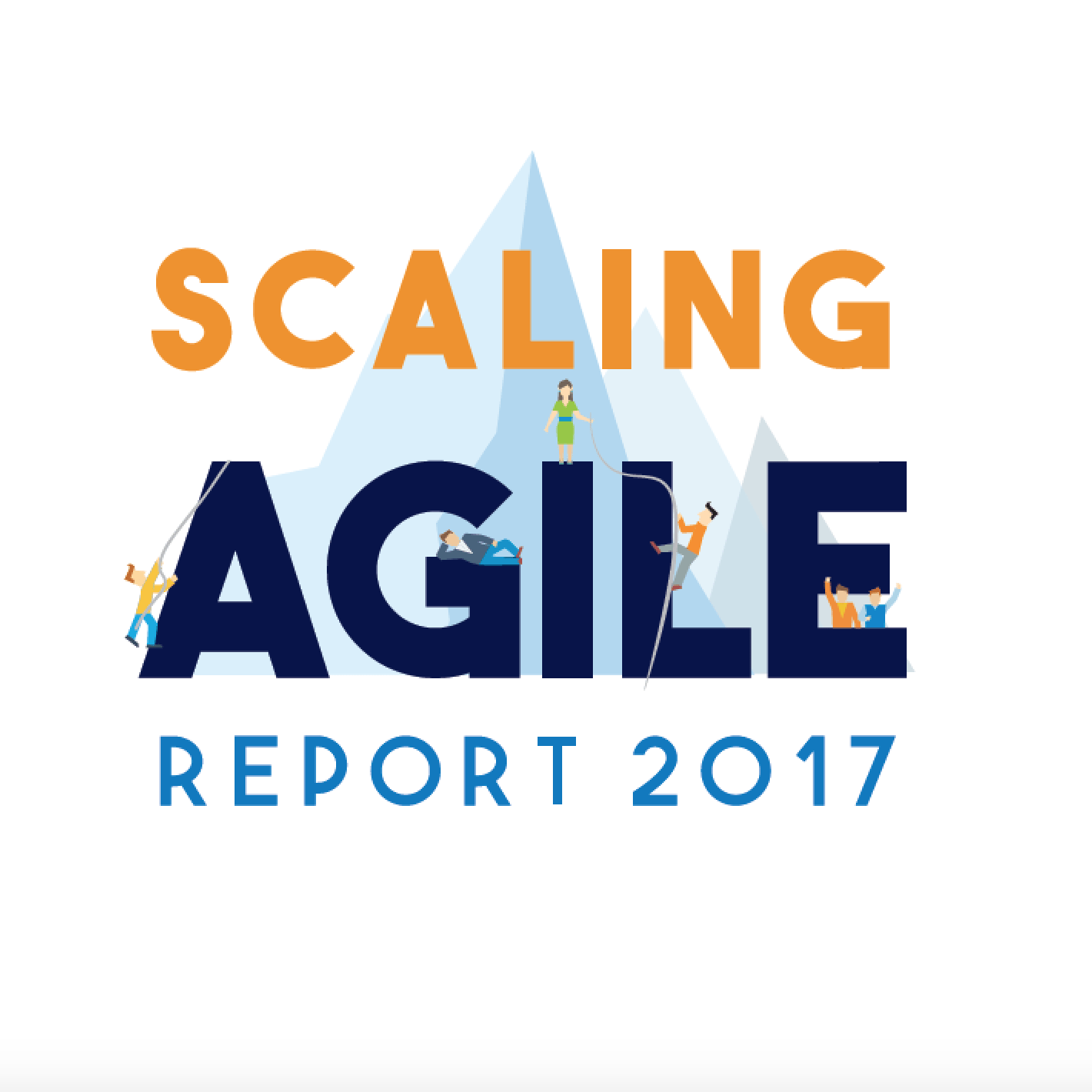 Scaling Agile Survey 2017