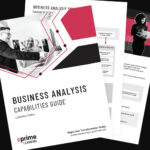 Business Analysis Capabilities Guide