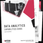 Data Analytics Capabilities Guide