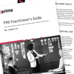 PMO Practitioner's Guide
