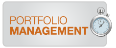 portfolio management consulting